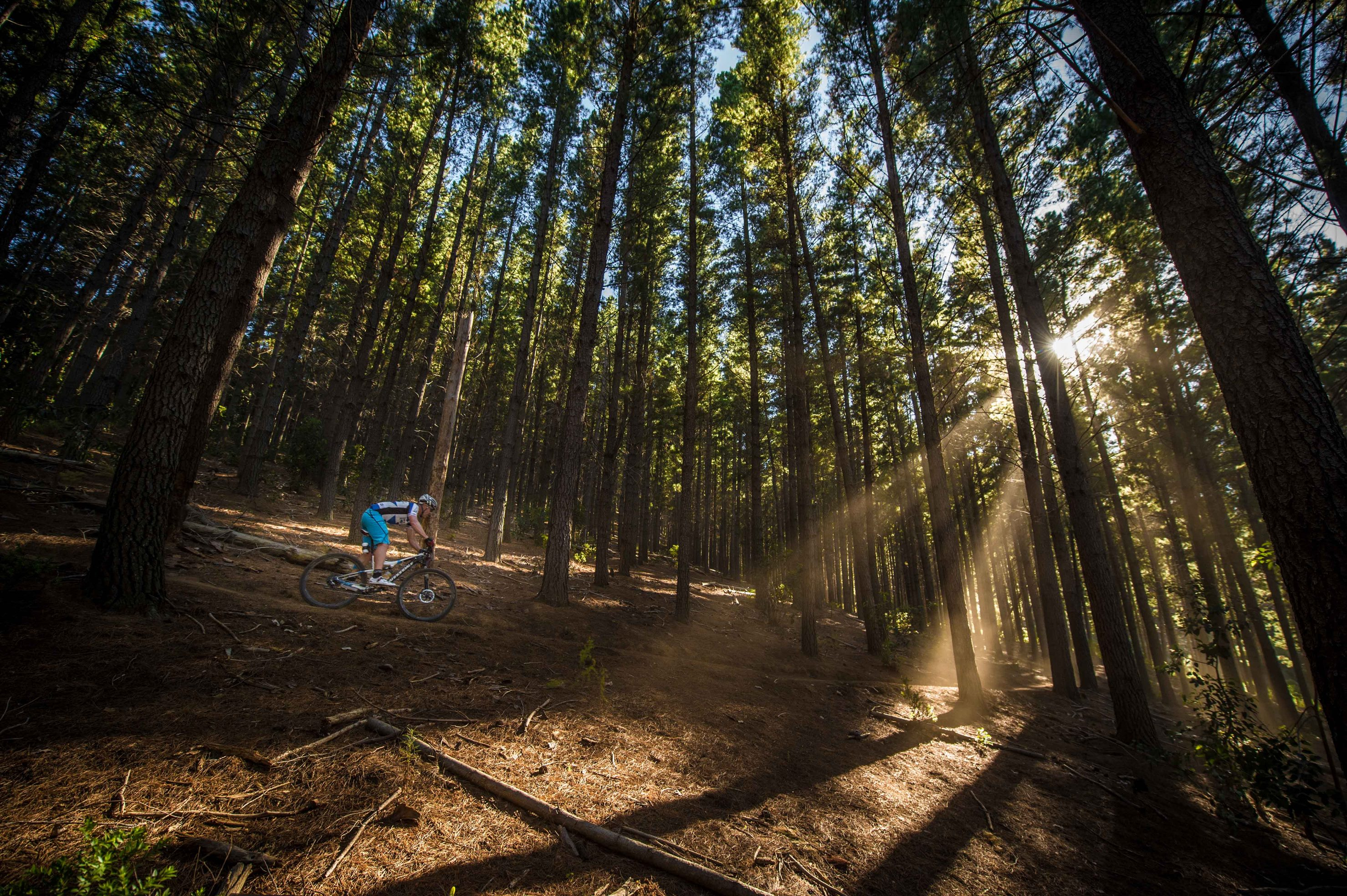BUCO Origin Of Trails Stage One equates to single track heaven