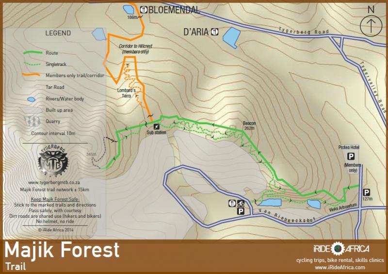 Majik Forest