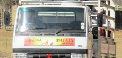 Hakuna Matata Circuit
