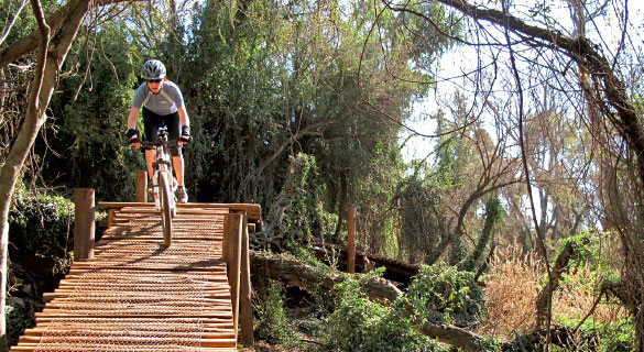 Groenkloof Nature Reserve MTB Trail
